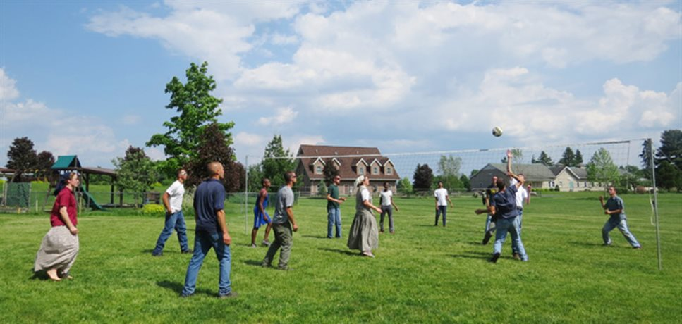young men and women playing volleyball together at the Fox Hill Bruderhof