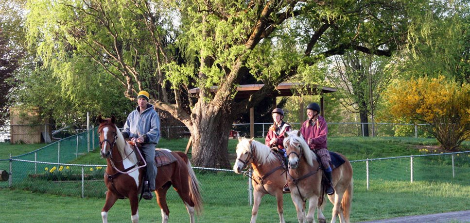 An image of a dad and his two daughters going for an early morning horseback ride at the Maple Ridge Bruderhof