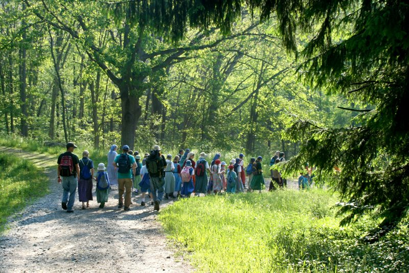 An image of the Spring Valley elementary school setting of on a hike through the woods