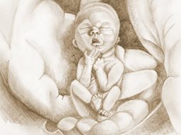 a pencil drawing of a tiny baby held in two large hands