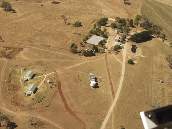 2002 aerial of Danthonia community